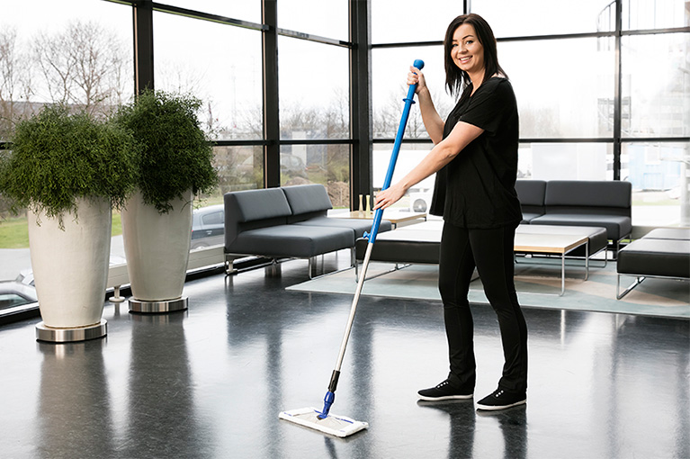 Image result for professional Cleaning